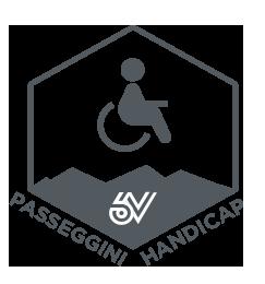Handicap/Passeggini