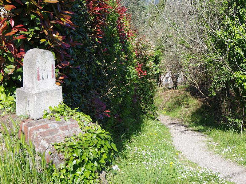 Itinerari - Pontemazzori - Montemagno -Pontemazzori,  Anello di Camaiore Antiqua