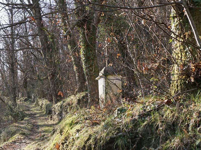 Sentieri - Basati - Canale del Giardino, Sentieri Alta Versilia