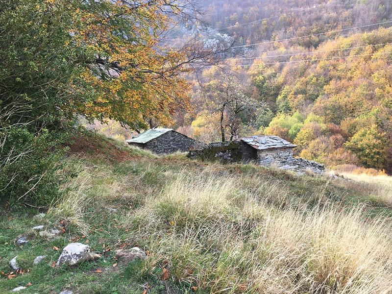 Sentiero 129: da Ponte Merletti alla Foce di Mosceta (Sentiero dei Carbonai)
