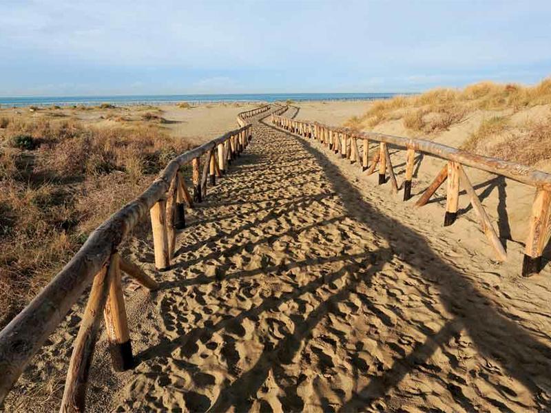 Itinerari - Lecciona: La Marina di Torre del Lago e il fascino delle dune