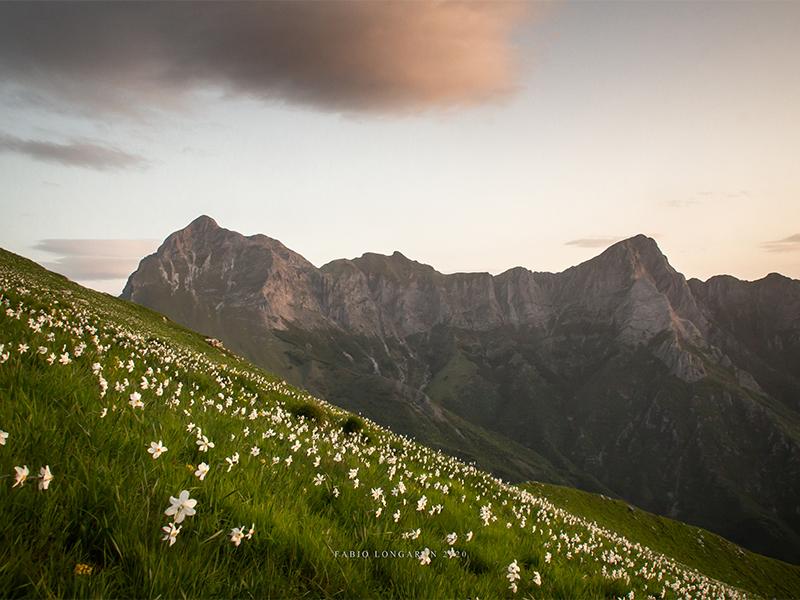 Da Stazzema al Monte Croce