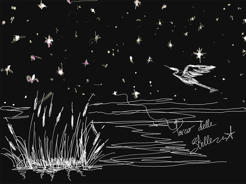 Eventi - Il parco delle stelle