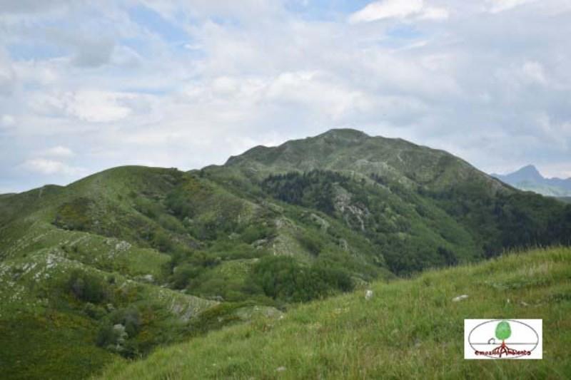Eventi - Ferragosto sui prati del Monte Prana