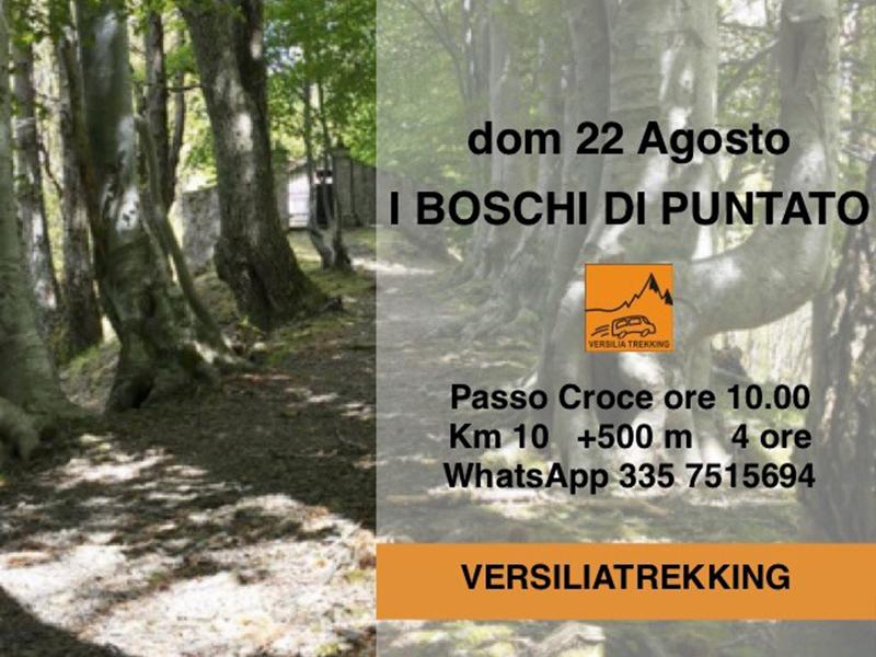 Eventi - I boschi di Puntato