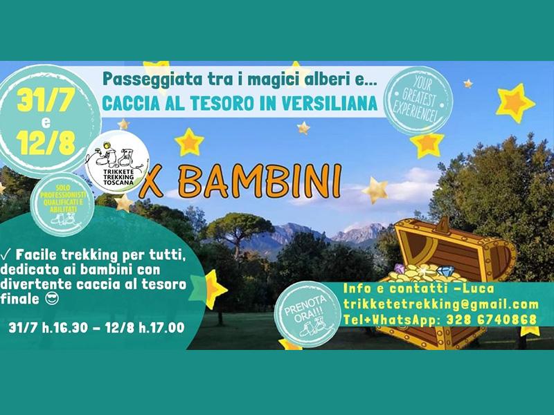 Eventi - Caccia al tesoro tra i magici alberi della Versiliana