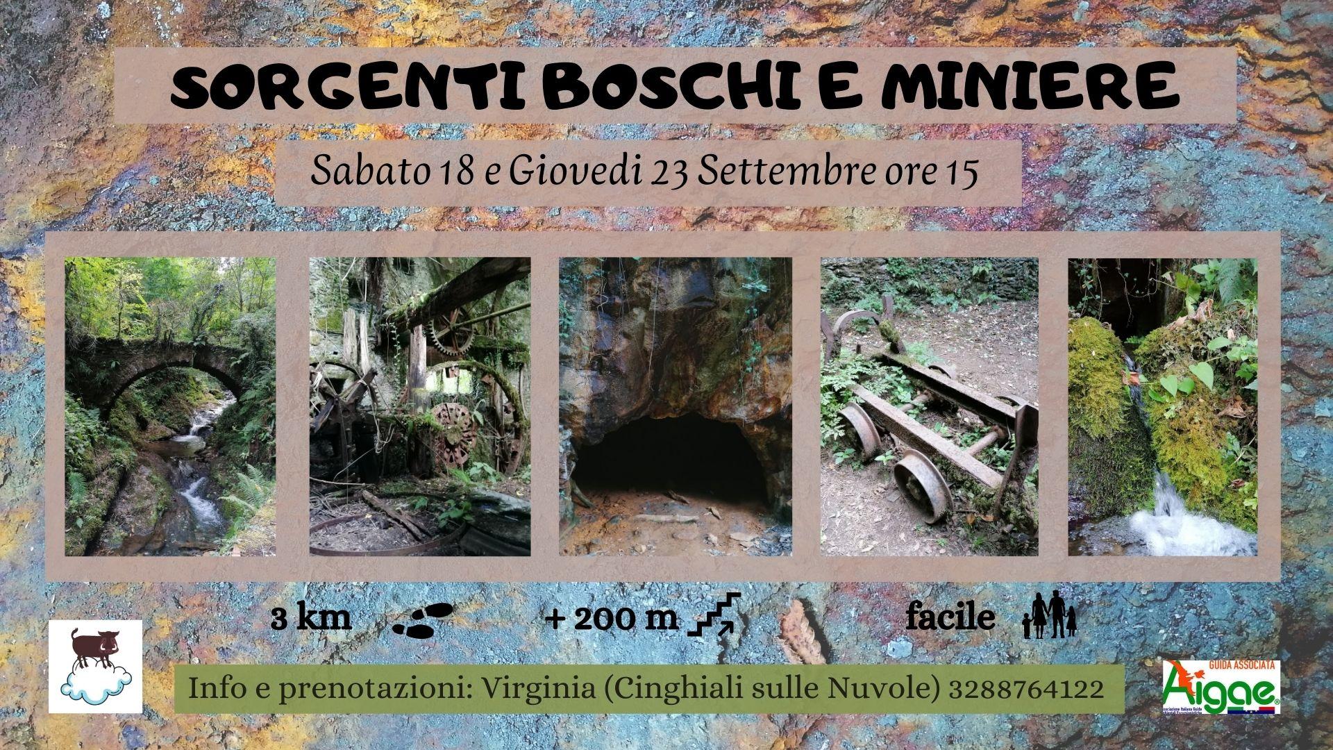 Eventi - Sorgenti Boschi e Miniere